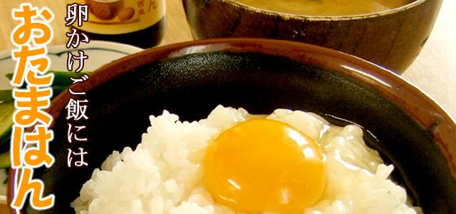卵かけご飯専用醤油の先駆け!TKGブームの生みの親!おたまはん